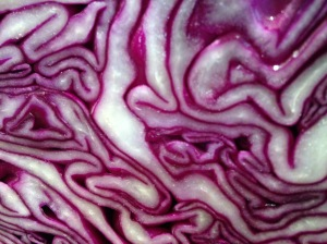 red cabbage, designed by nature